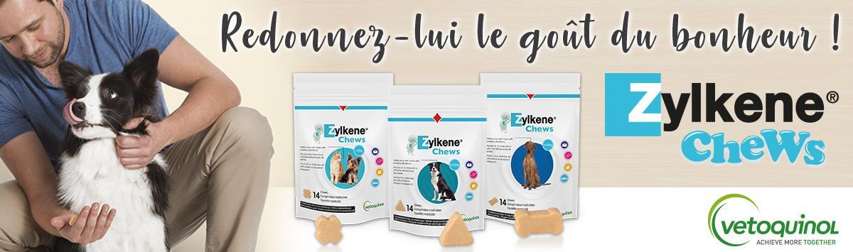 Zylkène chews : redonner-lui le goût du bonheur !